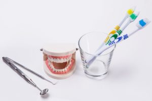Toothbrushes and dental equipment beside a model of human teeth